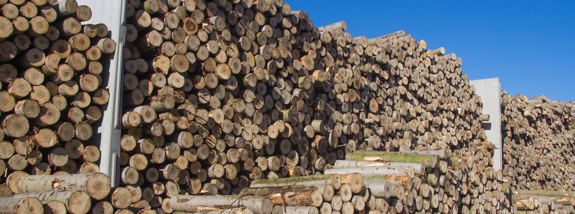 cima-compensati-stock-legno